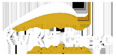 kwikricargo logo